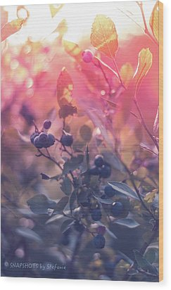 Berries In The Sun Wood Print by Stefanie Silva