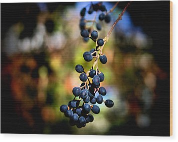 Berry Cold Out Wood Print by Karen M Scovill