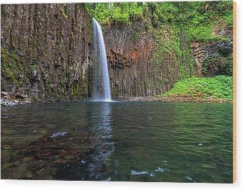 Beside Abiqua Falls In Summer Wood Print by David Gn