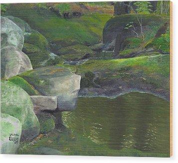 Beside Cool Waters Wood Print by Laurel Ellis