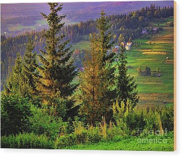 Wood Print featuring the photograph Beskidy Mountains by Mariola Bitner