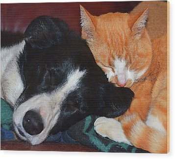 Best Friends Wood Print by Susie Fisher