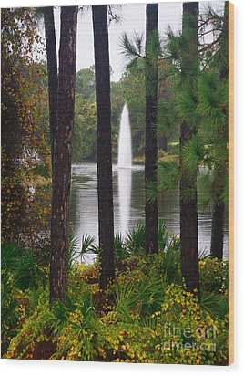 Wood Print featuring the photograph Between The Fountain by Lori Mellen-Pagliaro
