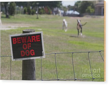 Beware Of Dogs Wood Print by Theresa Willingham
