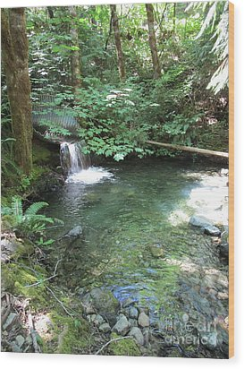 Wood Print featuring the photograph Beyond The End Of The Trail At Limpy Creek by Marie Neder