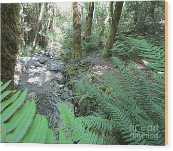 Wood Print featuring the photograph Beyond The Ferns by Marie Neder