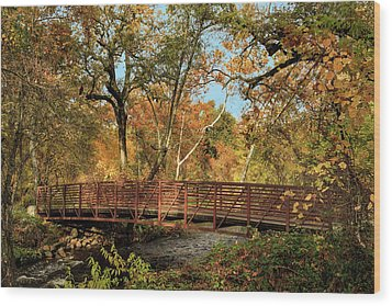 Wood Print featuring the photograph Bidwell Park Bridge In Chico by James Eddy