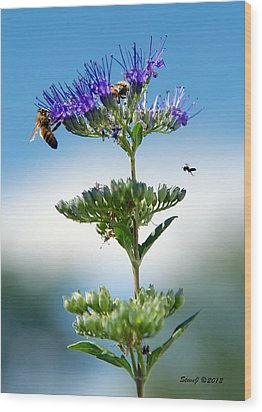 Big Bees Little Bee Wood Print by Stephen  Johnson