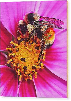 Big Bumble On Pink Wood Print by ABeautifulSky Photography