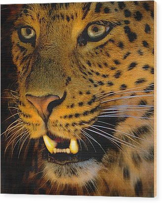 Big Cat Wood Print by Louise Fahy