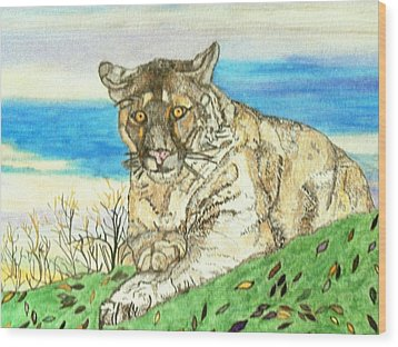 Big Cat Watching Out For Prey Wood Print by Connie Valasco