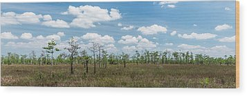 Wood Print featuring the photograph Big Cypress Marshes by Jon Glaser