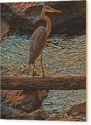 Big Falls Blue Heron Wood Print