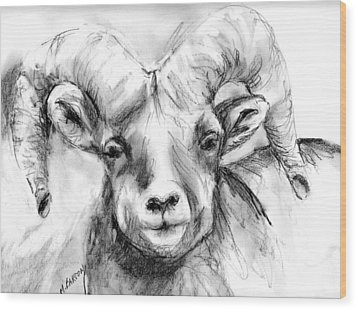 Big Horn Sheep Wood Print by Marilyn Barton