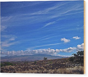Big Island Landscape 3 Wood Print by Bette Phelan