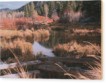 Big Meadow Creek Fall Wood Print by Larry Darnell