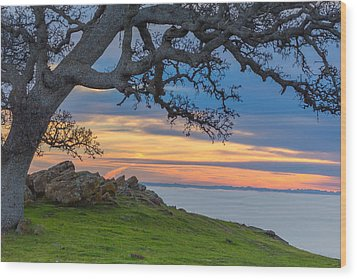 Big Oak Above Fog Wood Print