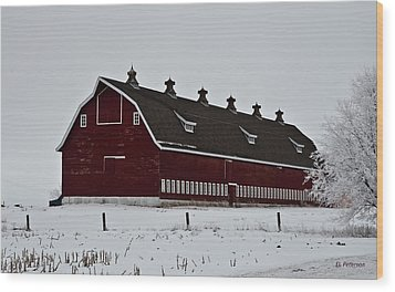 Big Red Barn In The Winter Wood Print by Edward Peterson