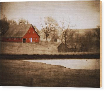 Big Red Wood Print by Julie Hamilton