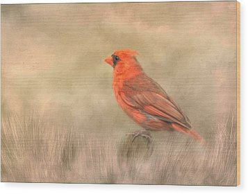 Wood Print featuring the mixed media Big Red by Steven Richardson