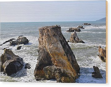 Wood Print featuring the photograph Big Rocks In Grey Water by Barbara Snyder