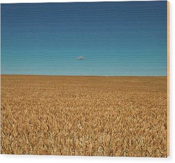 Big Sky Montana Wood Print by Harry Strharsky