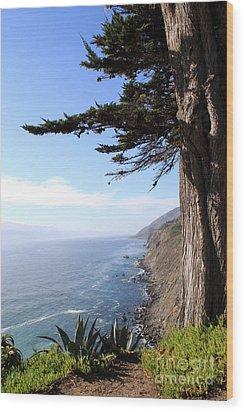Big Sur Coastline Wood Print by Linda Woods