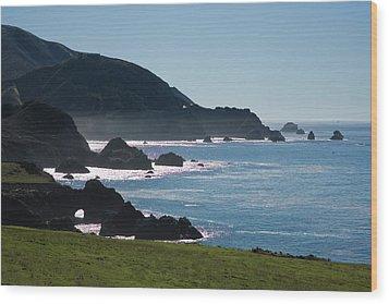 Big Sur  Wood Print by Doron  Hanoch
