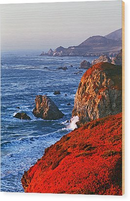 Big Sur Wood Print