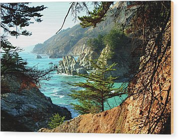 Big Sur Vista Wood Print by Charlene Mitchell