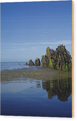 Wood Print featuring the photograph Bigger Blue by Mira Cooke