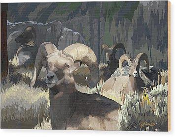 Bighorn Boys Wood Print