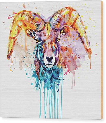 Bighorn Sheep Portrait Wood Print