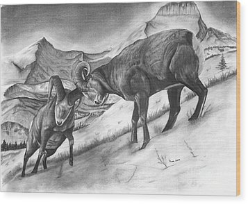 Bighorn Sheep The Battle For Supremacy Wood Print by Russ  Smith