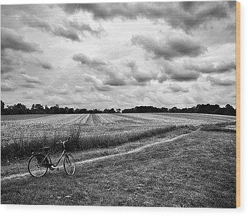 Bike Ride Wood Print by Karen Stahlros