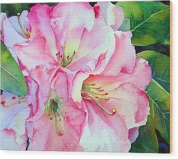 Biltmore Rhodies Wood Print