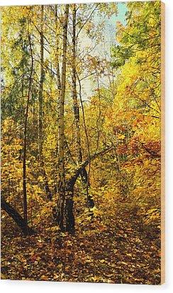 Birch Autumn Wood Print by Henryk Gorecki