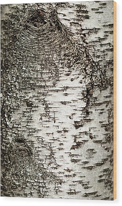 Wood Print featuring the photograph Birch Tree Bark by Christina Rollo