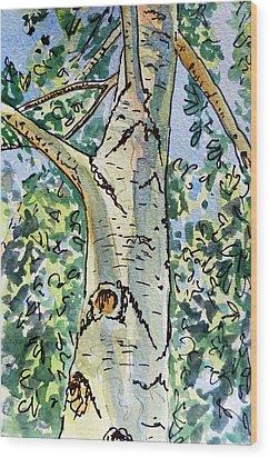 Birch Tree Sketchbook Project Down My Street Wood Print by Irina Sztukowski