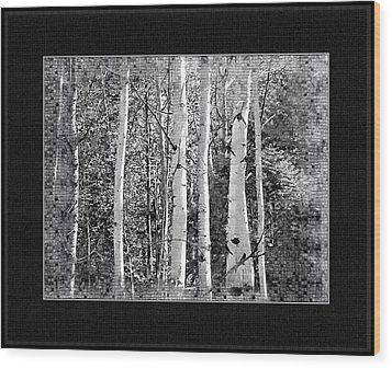 Wood Print featuring the photograph Birch Trees by Susan Kinney