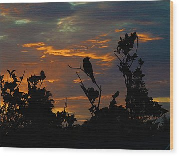 Bird At Sunset Wood Print by Mark Blauhoefer