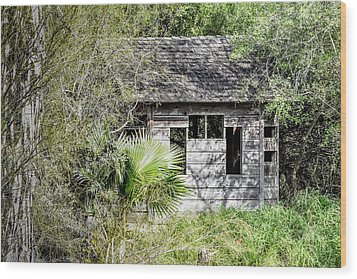 Bird Blind At Frontera Audubon Wood Print