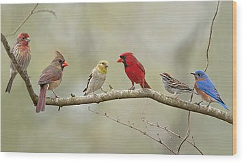 Bird Congregation Wood Print
