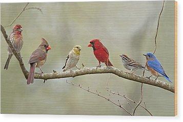 Bird Congregation Wood Print by Bonnie Barry
