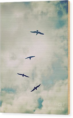 Wood Print featuring the photograph Bird Dance by Lyn Randle