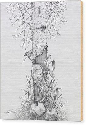 Bird In Birch Tree Wood Print