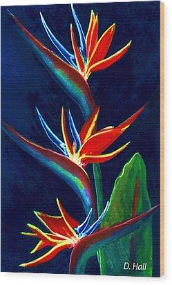 Bird Of Paradise #161 Wood Print by Donald k Hall
