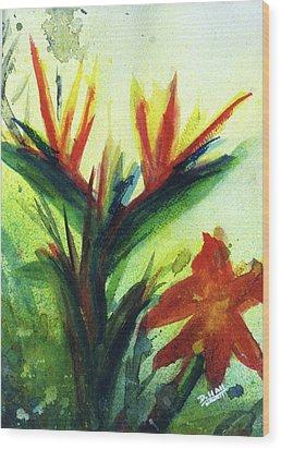 Bird Of Paradise, #177 Wood Print by Donald k Hall