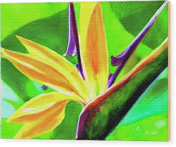 Bird Of Paradise #262 Wood Print by Donald k Hall