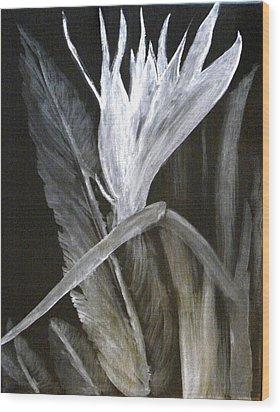 Bird Of Paradise Black And White Wood Print by Rita Tortorelli